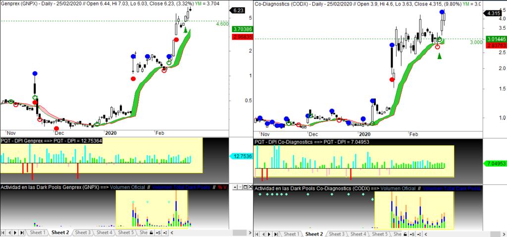 MLTradingZone - Paper trading - GNPX CODX